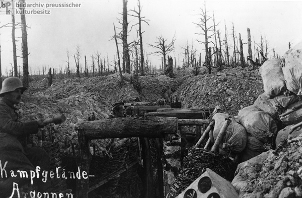 The Battlefield in the Argonne Forest (1916)
